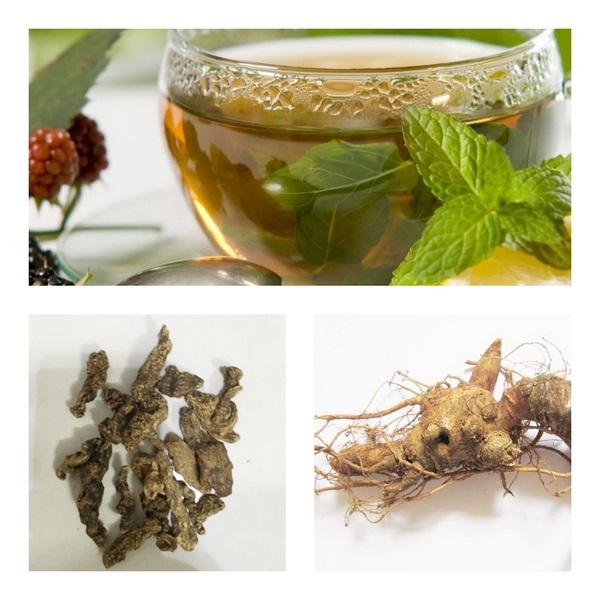 Trà Sâm Ngọc Linh – thức uống bổ dưỡng cho sức khỏe 3